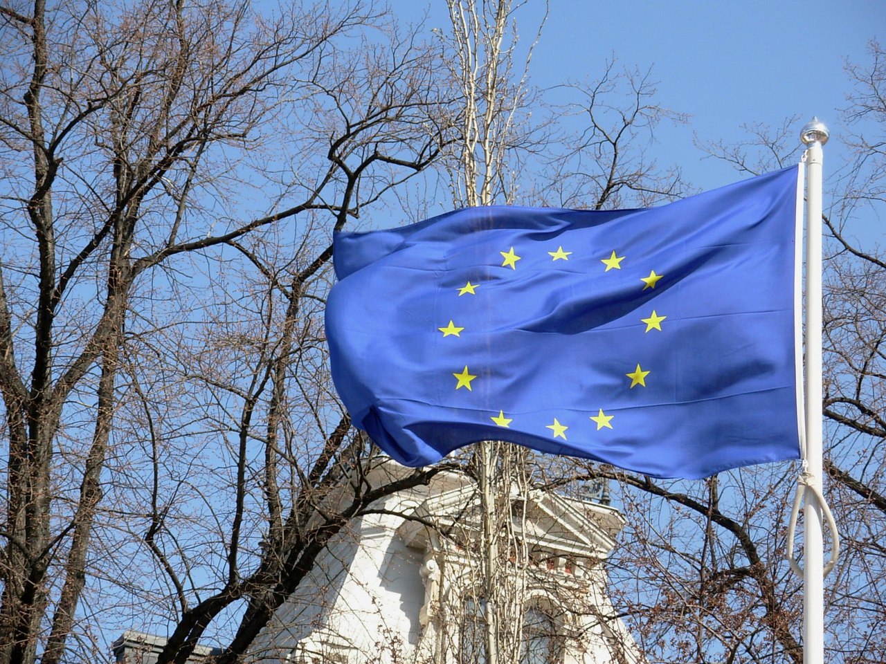 The future of EU youth policy: Democracy in puberty