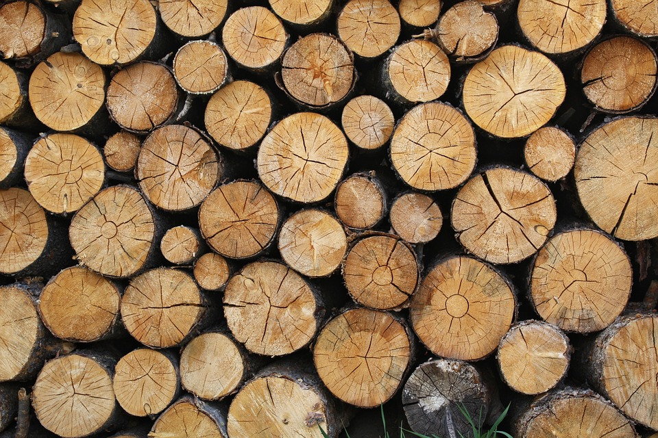 The EU Timber Regulation: Three years of ineffective implementation