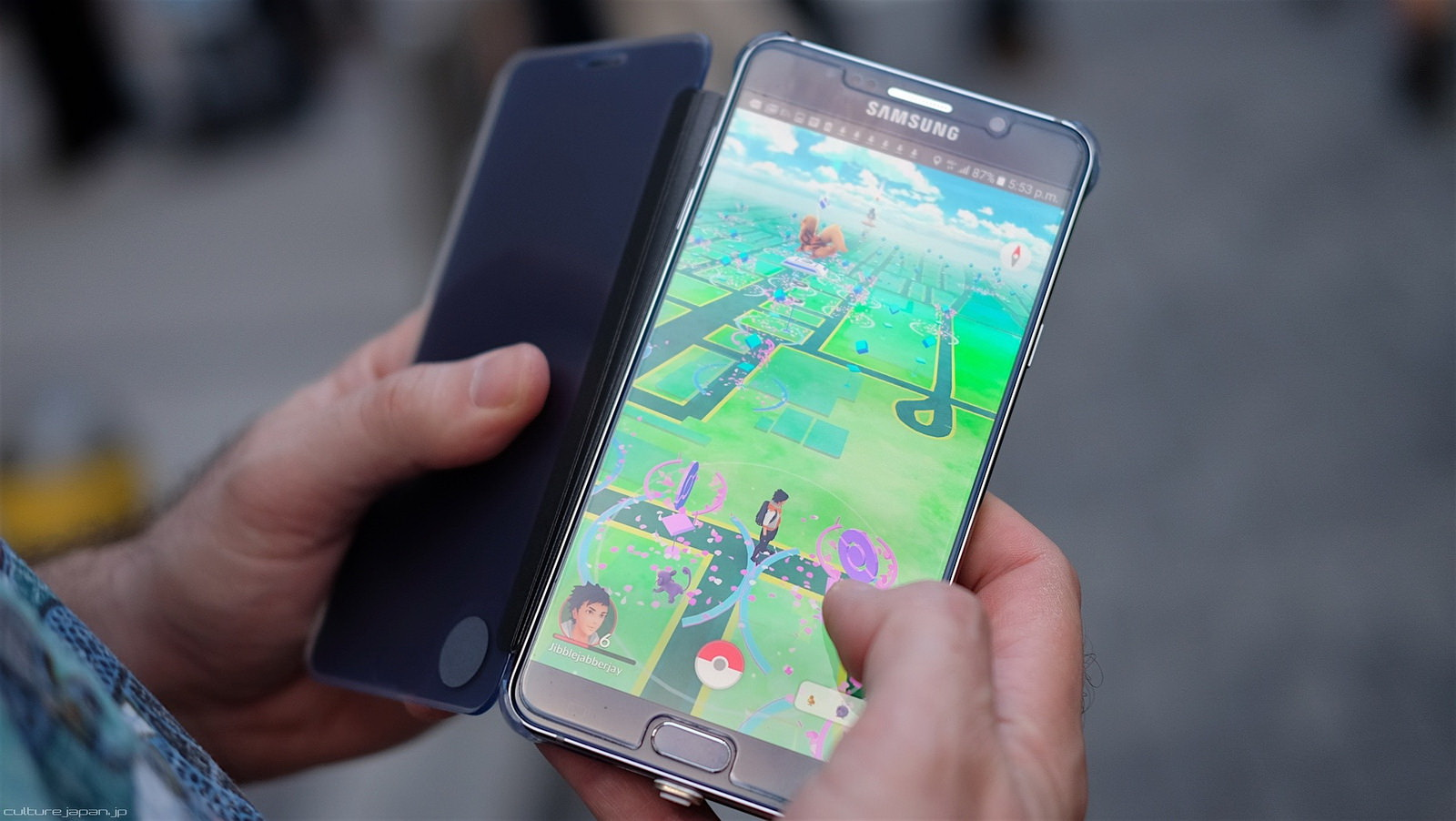Pokémon GO: To regulate or not to regulate?