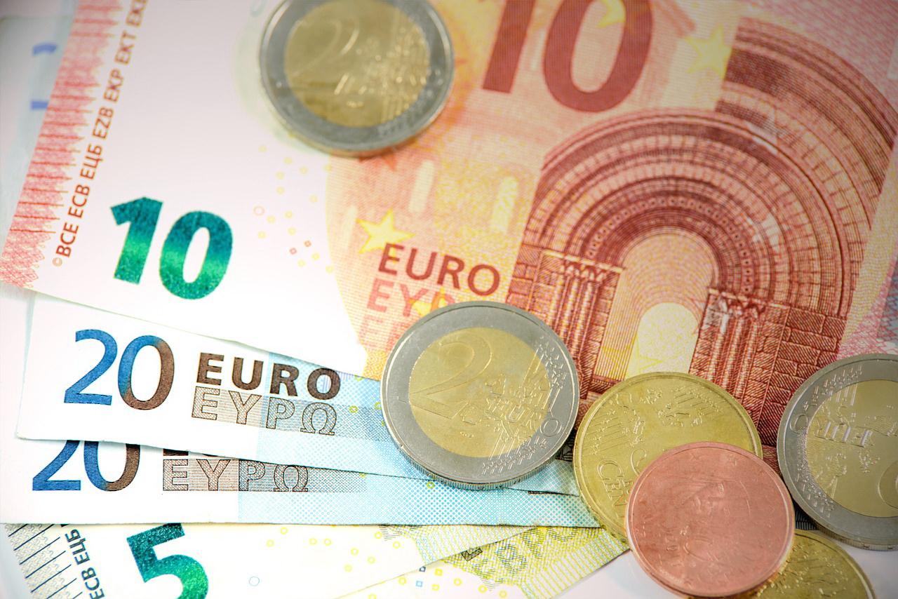 Brave New Euro