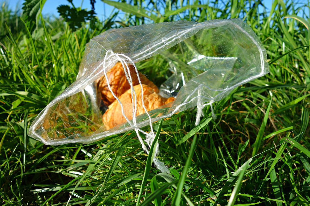 Wasting food or creating waste?