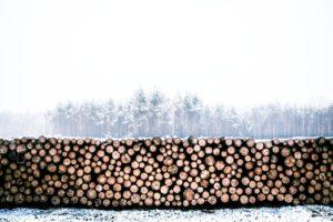 lumber-1246545_1280