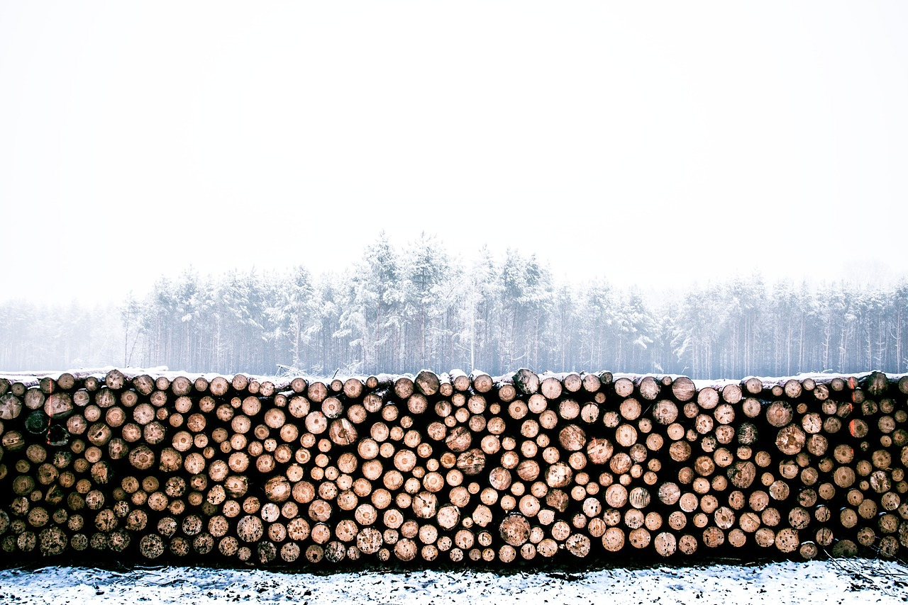 Positive implications of CETA on the wood industry sector in the EU and CANADA