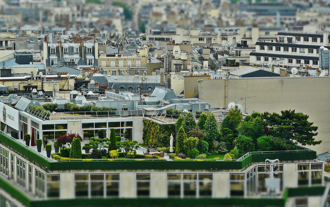 Welcome to the not so concrete jungle: How the EU envisages a greener future