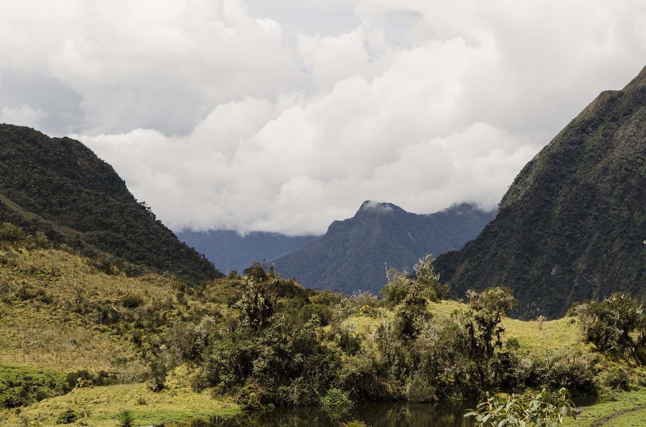 Biodiversity loss, so important yet not so popular issue