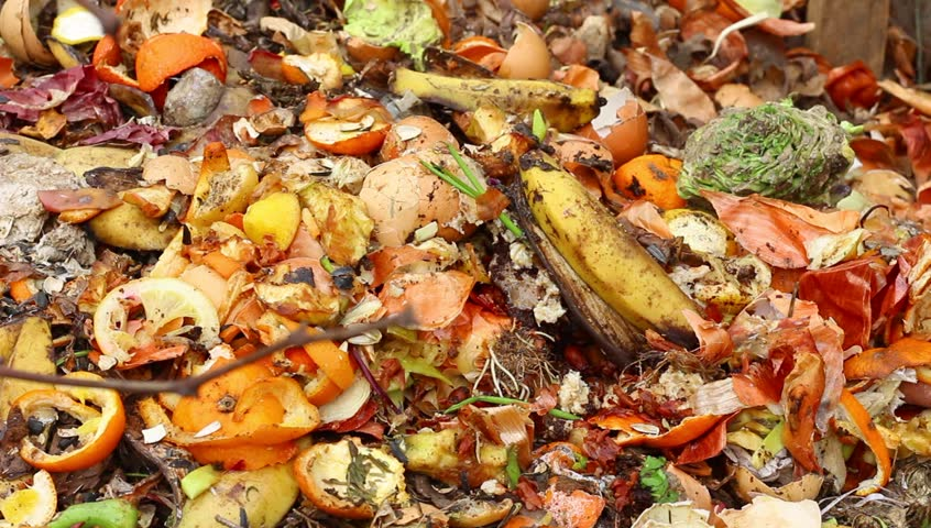 Have our food waste policies passed their expiry date?