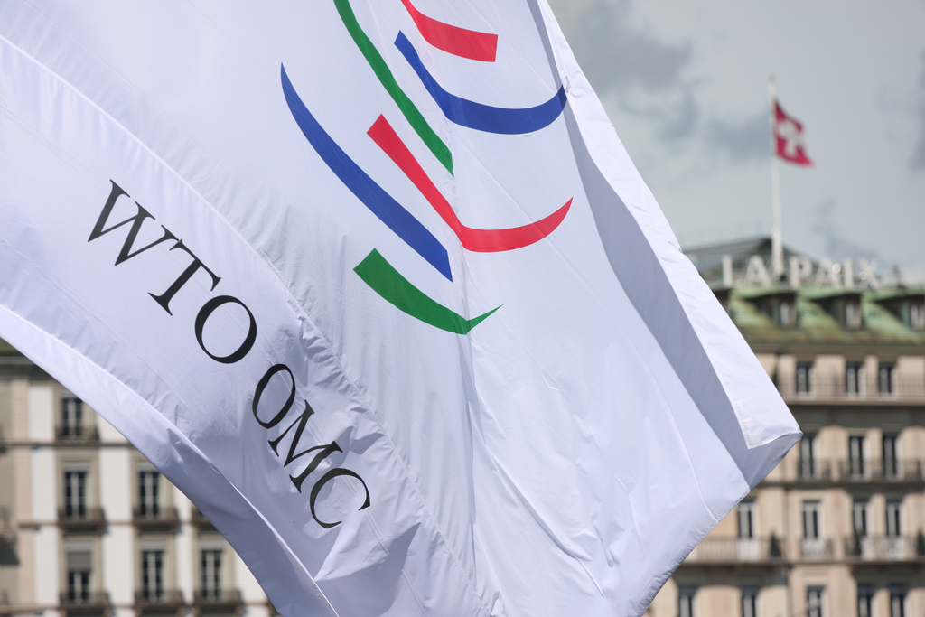 To improve is to change. Can the WTO be reformed?